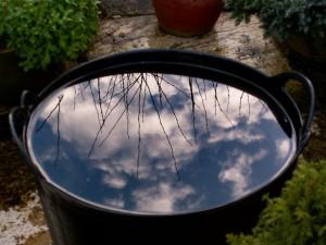 Feng Shui (Wind und Wasser) bei der Gartengestaltung