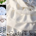 sunday roses 150x150 Deutschlands beste Deko Blogs