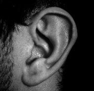 Das Ohr (Erik mit k)