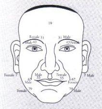 Gesicht lesen