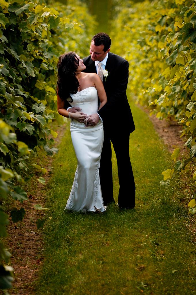 Hochzeitspaar in einem Weinberg
