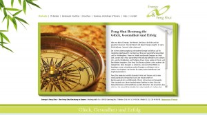 Unnötig? Aufwändig gestaltete Homepage: www.energyfengshui.de
