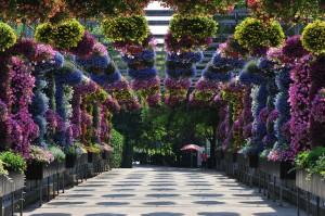 Farbenfroh: Der Botanische Garten Shanghai