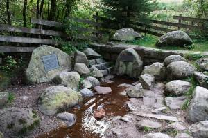 Donauquelle: Die Quelle der Breg wirkt beinahe mystisch