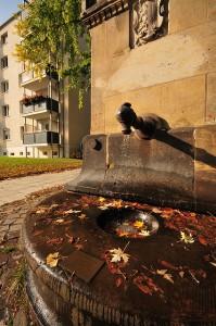 Queckbrunnen in Dresden