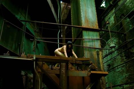 Revere Sugar Factory, Brooklyn: Naturfotografie inmitten der Großstadt
