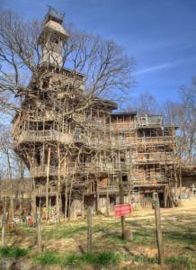 Blick aus Richtung Süden auf das Baumhaus