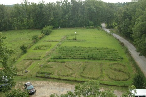 Blick vom Glockenturm des Baumhauses in den Garten