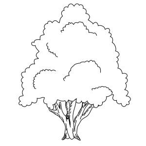 Symbolische Darstellung eines Baumes