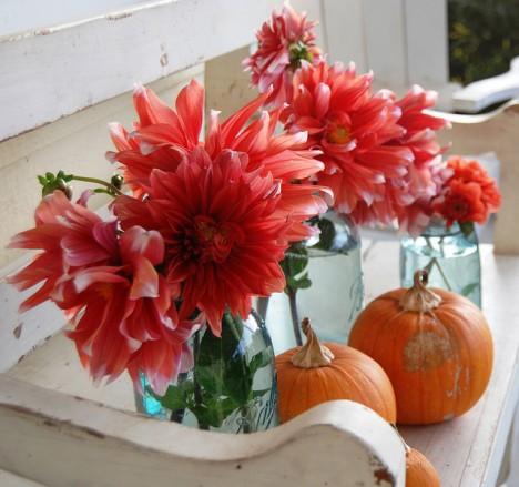 Leuchtend rote Dahlien und orangegelbe Früchte: typisch Herbst! (Foto: hello-julie)