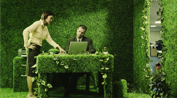 Bürobegrünung: Auf die Ausgewogenheit kommt es an! Sind die Pflanzen zu pflegeleicht, verringert sich der positive Effekt