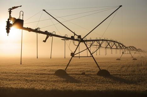 Bewässerungsanlage in einem Getreidefeld, Minnesota, USA