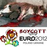 Boykottiert die UEFA EURO 2012!