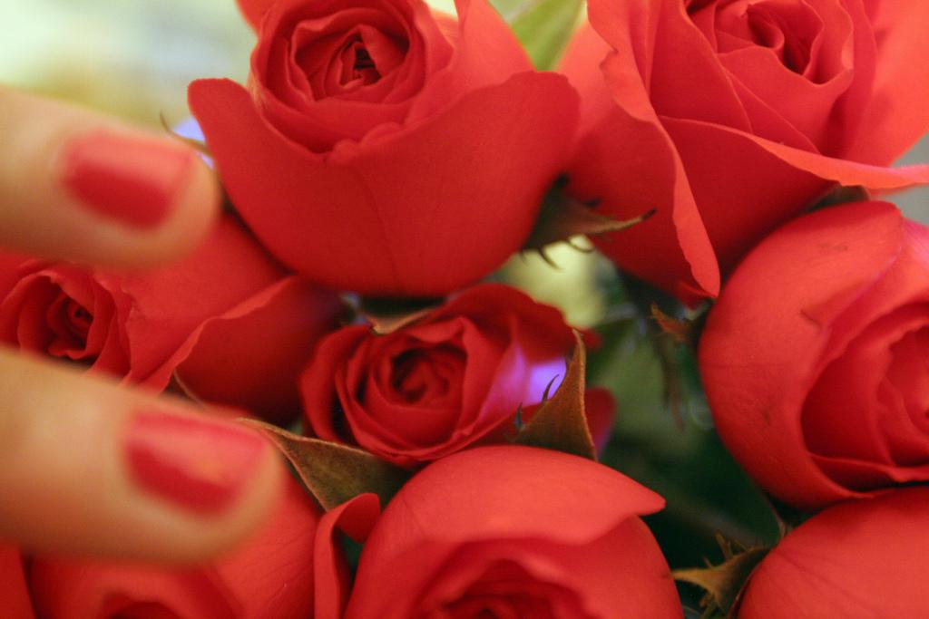 Der Duft frischer Blumen wirkt besonders erfrischend auf die Raumluft