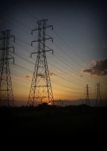 Trügerische Idylle: Freilandleitungen im Sonnenuntergang