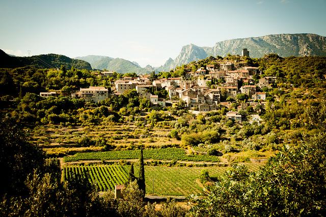 Languedoc Roussillon verfügt über exzellentes Feng Shui - Weinanbau im Süden Frankreichs
