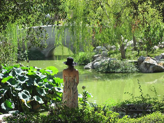 Wann schaffen Sie sich Ihren eigenen Traum-Garten? Die dunke Jahreszeit ist die beste Planungszeit!