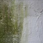 Feuchtigkeit im Keller: Top-Tipps gegen feuchte Kellerwände