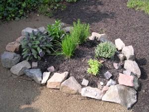 Mit wenig Aufwand lassen sich leckere und gesunde Kräuter im Garten anbauen. Foto: H.Seipel