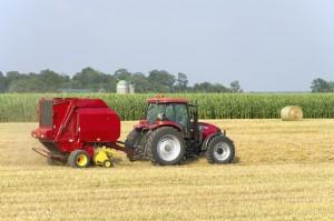 So wie die Ernte ausfällt, so wird werden die kommenden Monate werden, reich oder arm. Foto: istockphoto / SimplyCreativePhotography