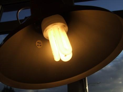 Der Einsatz von Energiesparlampen ist nicht unumstritten.