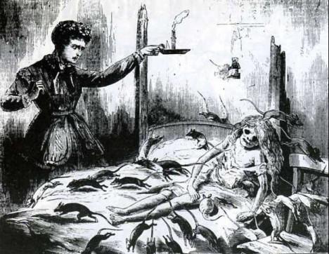 Ob Pest, Ruhr oder Cholera - Ratten sind nicht erst seit jüngster Zeit als Überträger tödlicher Krankheiten gefürchtet
