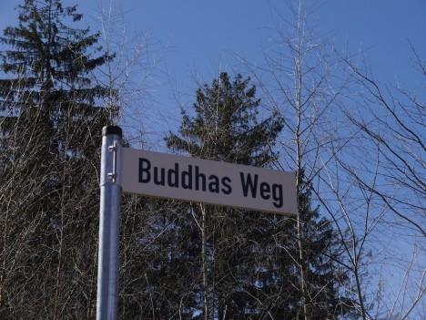 Nicht nach Fernost, sondern in den Odenwald bin ich gefahren, um ein buddhistisches Kloster zu besuchen. Foto: ©Hedwig Seipel