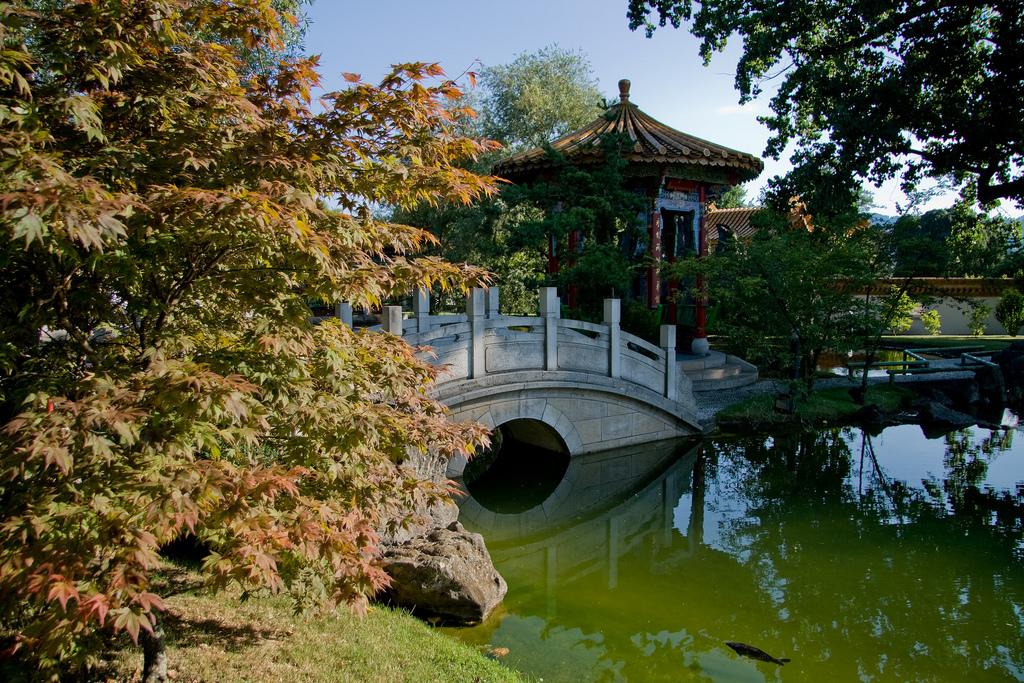 Harmonie von Mensch und Natur: Der Chinagarten in Zürich