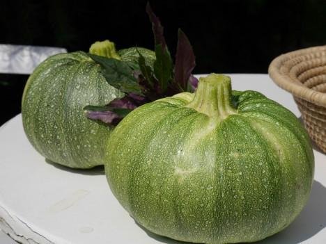 Gemüse aus dem eigenen Garten ist viel Mahr als nur Gaumenschmaus. Foto: © Hedwig Seipel