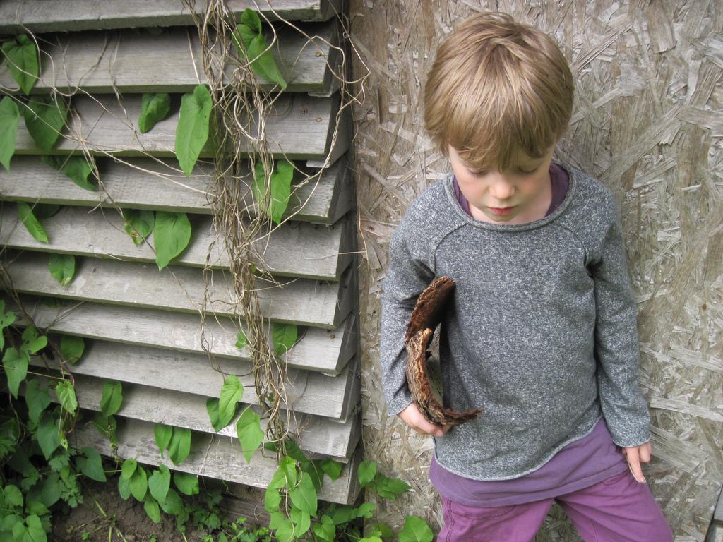 Im Trend: Bio-Textilien aus nachwachsenden Rohstoffen