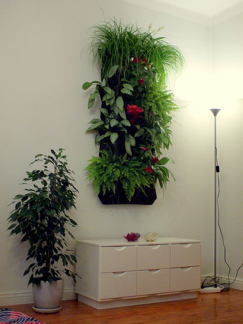 vertical gardening h ngende tomaten und lebendige bilder. Black Bedroom Furniture Sets. Home Design Ideas