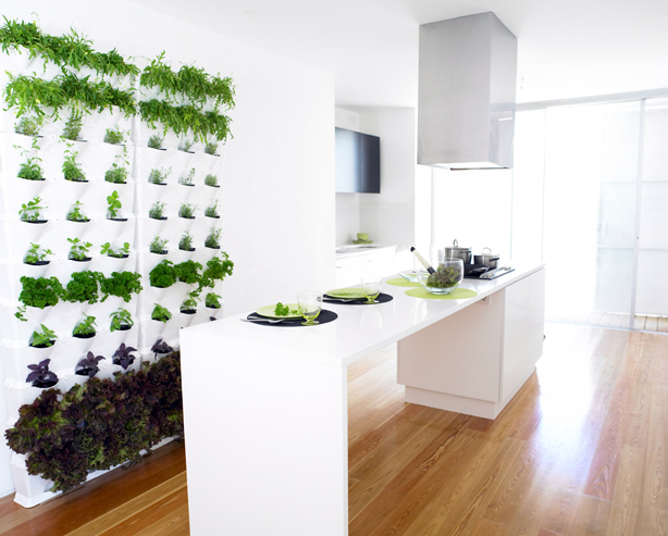 Mit einem vertikalen Gemüsegarten hat man zu jeder Jahreszeit Salat und Kräuter im Haus