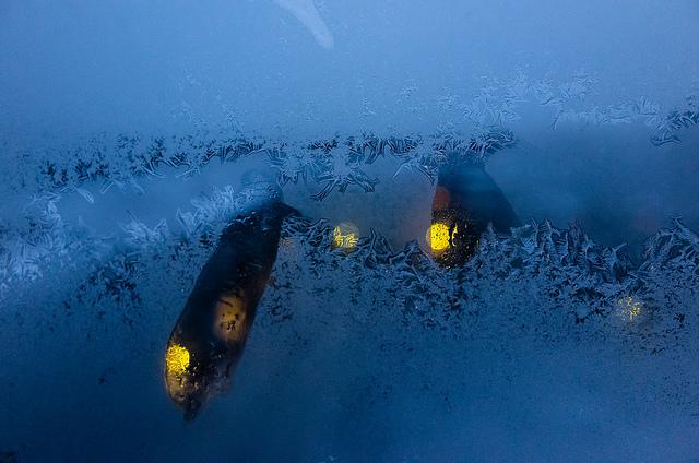Eisblumen im Fenster - romantisch, aber schädlich. Foto (C) Anton Strogonoff / flickr