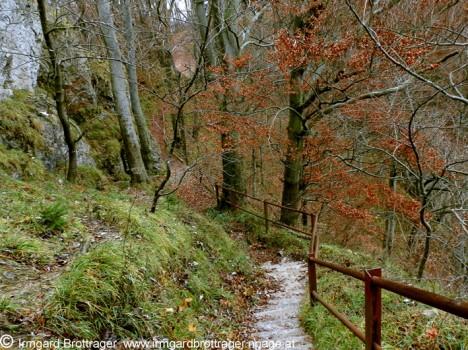 Weg zum Jungfernsprung-Felsen, Foto (C) Irmgard Brottrager