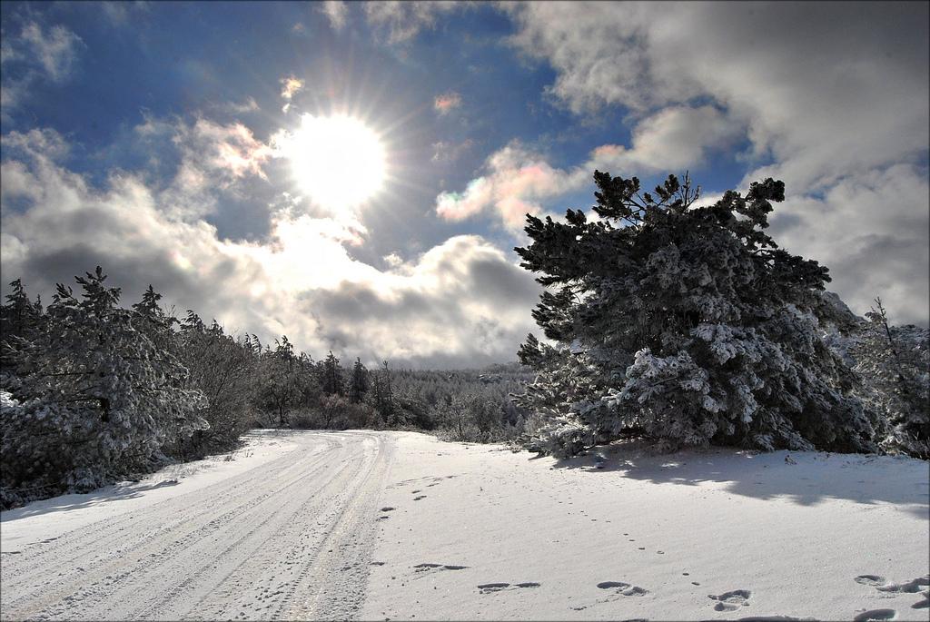 Seltener Anblick: Sonnenlicht an einem Wintertag