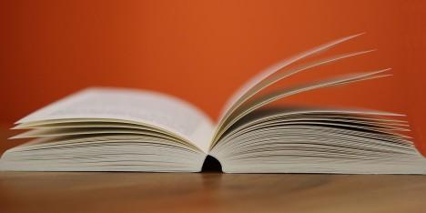 Man lernt nie aus! Nur die Gründe, warum wir etwas lernen, sind unterschiedlich. Foto: CC-0 Public Domain via pixabay.com
