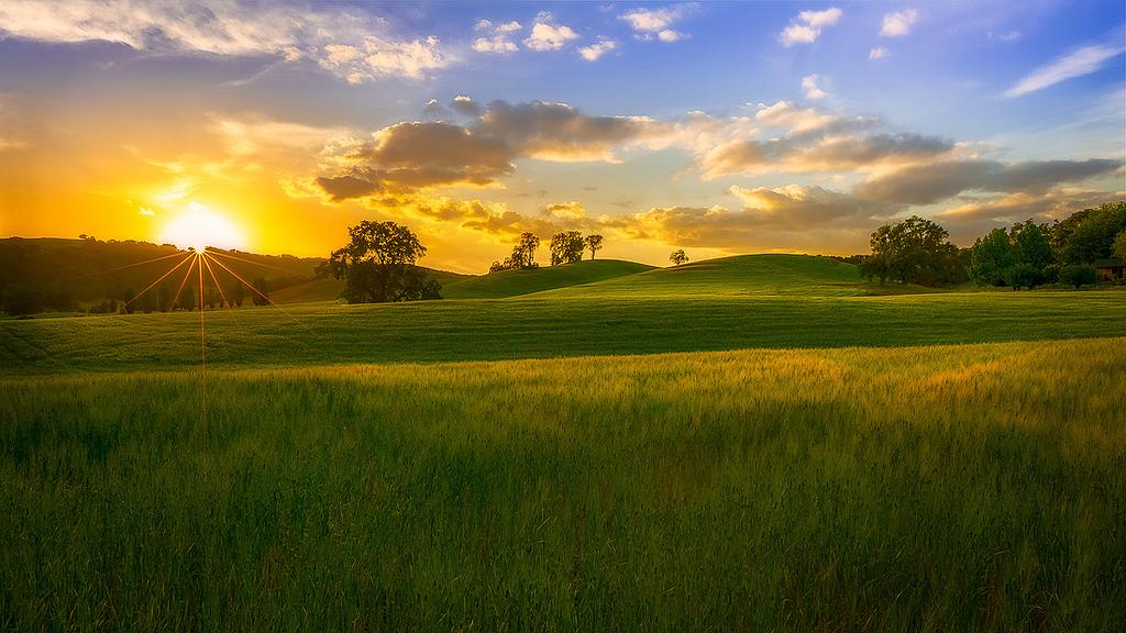 Rein rechnerisch stehen jedem Erdenbürger 2000 Quadratmeter landwirtschaftliche Nutzfläche zur Verfügung