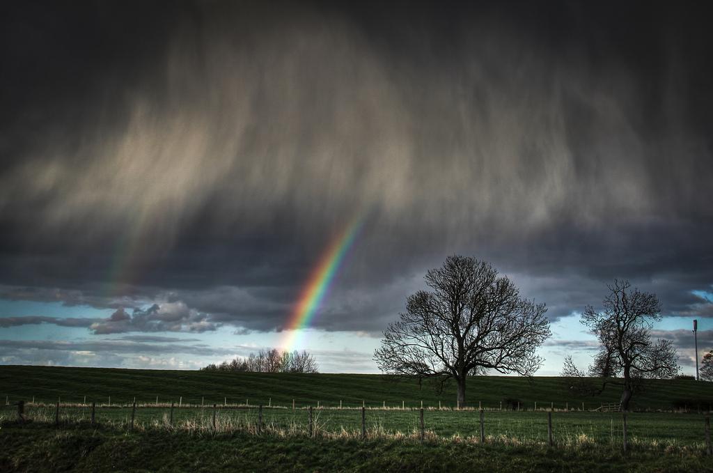 Farbwahrnehmung ist stimmungsabhängig: Manch einer sieht nur graue Wolken, während andere einen farbigen Regenbogen erkennen