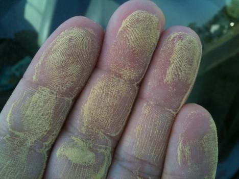Allergiker sollten sich 2016 auf eine lange Pollensaison einstellen