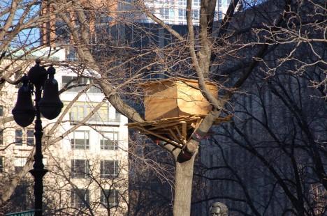 Perspektivwechsel: Baumhaus mitten in der Stadt