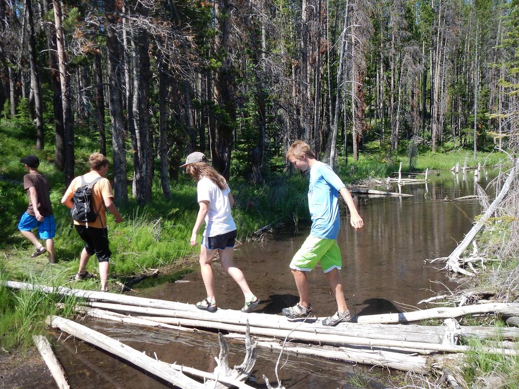 Bei jungen Menschen stärkt der Aufenthalt im Wald das Selbstwertgefühl