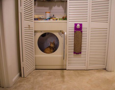 Durch die Integration von Wäschetrockner und Waschmaschine in einem Schrank entstehen zusätzlich nutzbare Abstellflächen und Stauraum