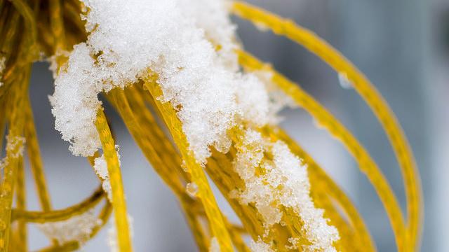 Wäsche trocknet im Winter auch bei Minustemperaturen, Foto (C) J. Triepke / flickr