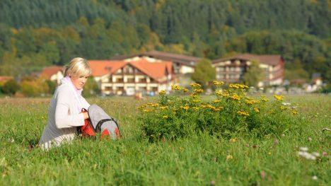 Wander- und Wellnessurlaub im Hotel Freund im Sauerland