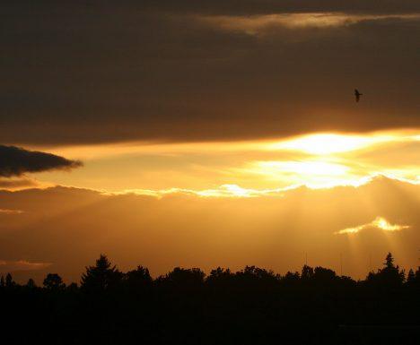 Sonnenuntergang, Foto (C) Bruce Fingerhood / flickr