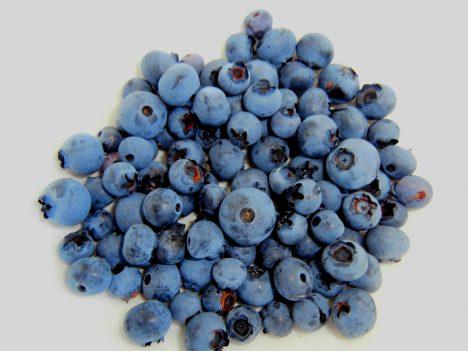 Blaubeeren, Foto (C) Jennifer C. / flickr