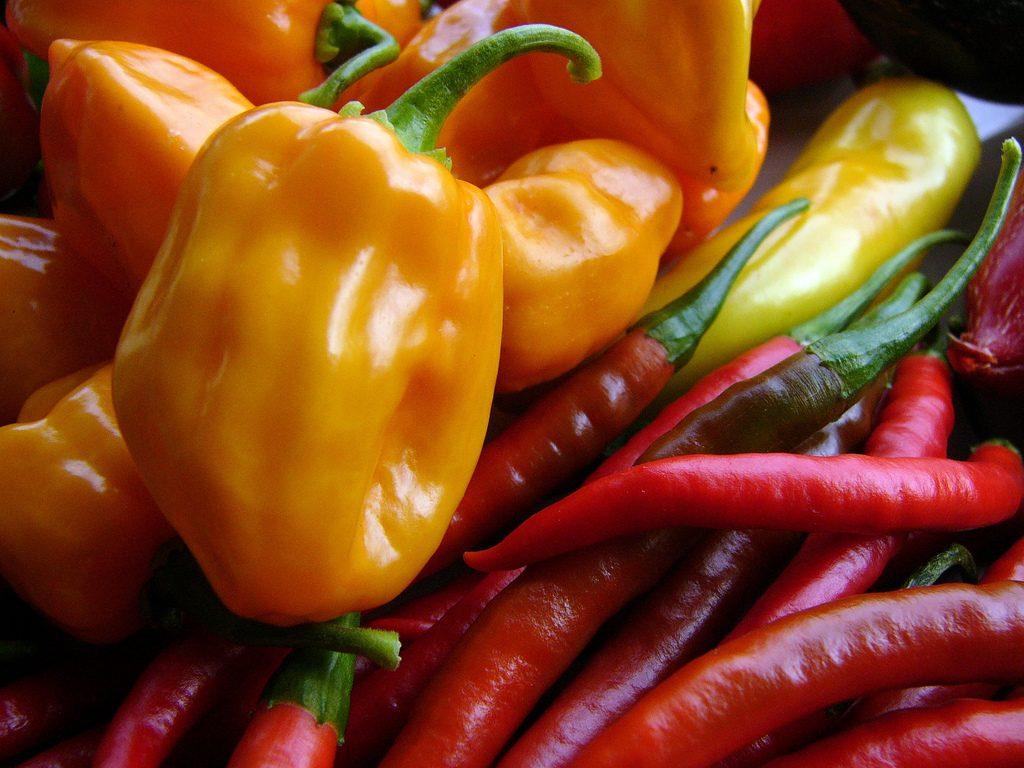 Paprika und Chili, Foto (C) John Winkelman / flickr CC BY 2.0