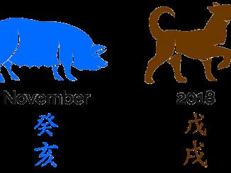 2018 - der Monat des Wasser-Schweins