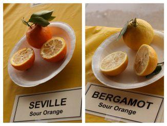 Bergamotten sind Zitrusfrüchte. Foto (C) Leslie Seaton / flickr CC BY 2.0