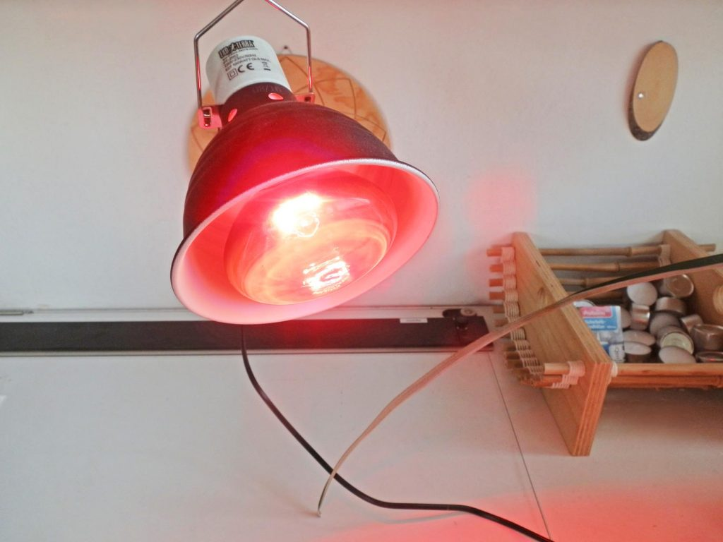 Infrarot-Lampe in hitzebeständiger Keramikfassung. Foto (C) Irmgard Brottrager